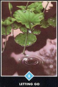 8 Воды Отпустить себя Ошо Дзен Таро