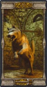 8 Мечей Таро Вечная Ночь Вампиров